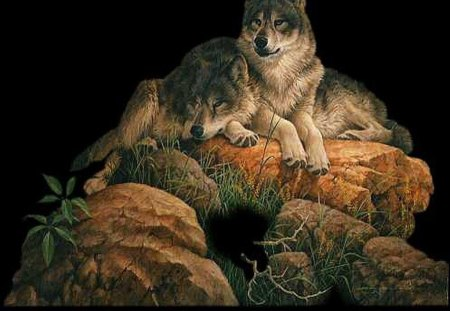 Wolves_on_the_Rocks - leaves, grass, rock, wolf