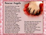 Rescue Angels  --for Carmen