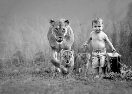 That's it, we're leaving - kid, travel, cubs, fun, lioness, cute