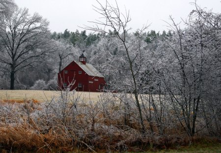 Barn in Frosty Countryside - trees, field, country, barns, frost, winter, woods
