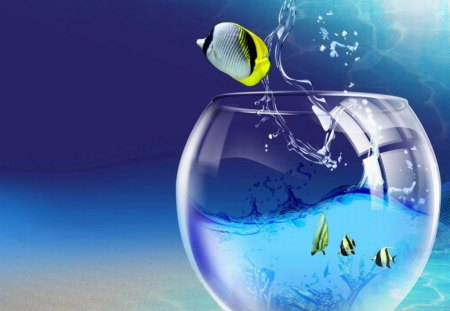 FISH OUT OF WATER. - pretty, bowl, cute, fish