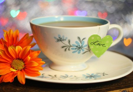 Cup of Love - cup, beautiful, friendship, coffee, tea, hearts, heart, photography, love, daisy