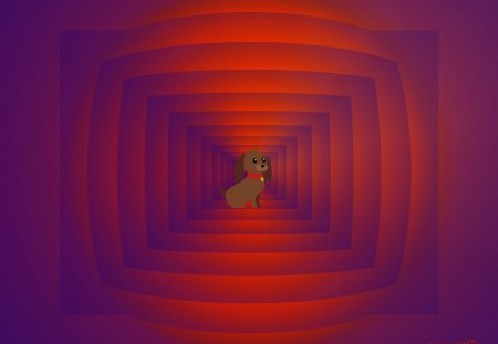 ♥ Dog Waiting ♥ - dog, abstract room, abstract, mind teaser, waiting dog