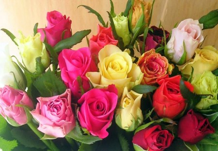 Roses for Patrice - flowers, roses, pink, colors, red, yellow