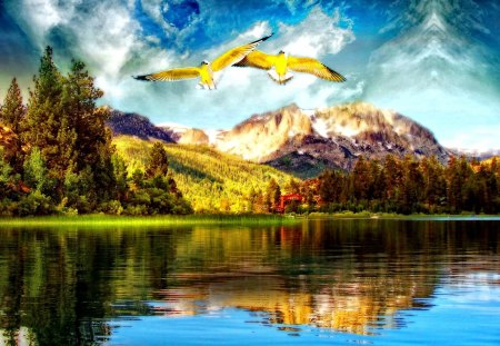Dream world - lake, beautiful, river, reflection, blue, water, nice, lakeshore, dream, mountain, trees, sky, shore, lovely, birds, clouds, world, sunny, nature, flying