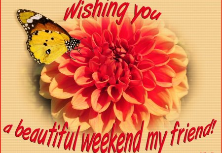 ♥ Beautiful Weekend ♥ - summer, beautiful weekend, orange, dahlia flower, weekend, yellow, butterfly, flower, weekend wishes