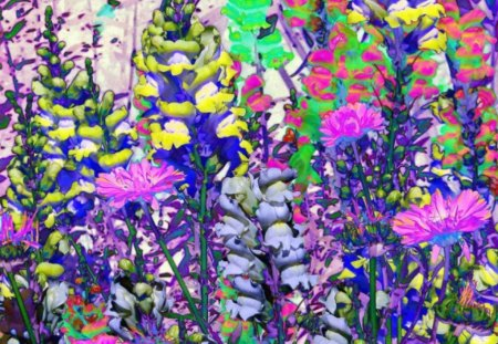 SOLARIZED SNAPDRAGONS - abstract, flowers, pretty, snapdragons