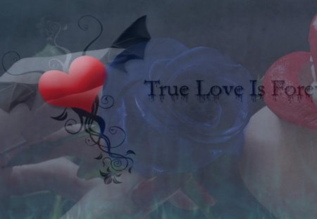 True Love Is Forever - love, forever, true, fantasy