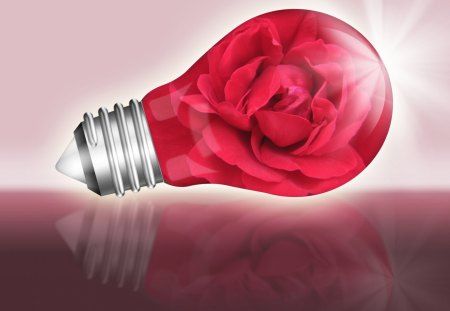 ♥  Light Bulb With Red Rose  ♥ - rose, light, 3d and cg, light bulb, red rose, abstract, love