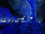 Christmas Lights in Tokyo