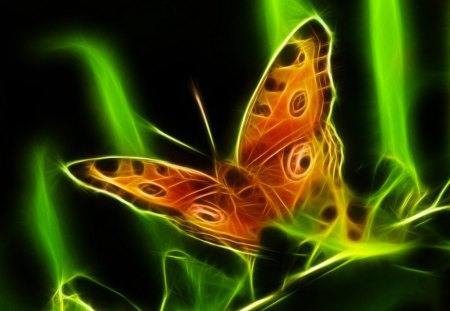 Majestic Glow - green, butterfly, glow, orange