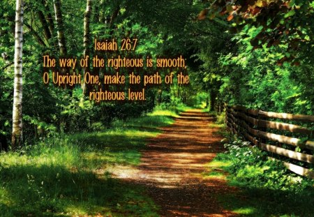 Life path 9 and 33 picture 5