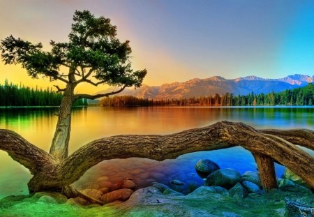 colorful landscape - water, mountains, trees, rocks