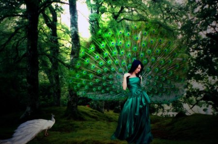 Peacock Princess - peacock, green, blue, feathers