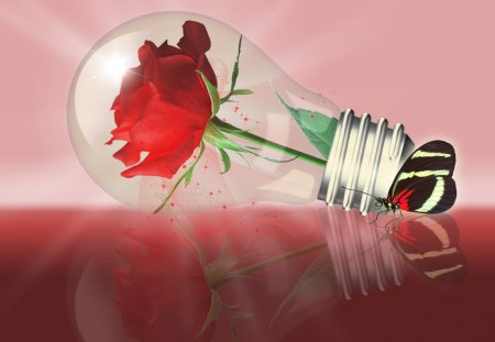 ♥ Light Bulb with Rose and Butterfly♥ - butterfly, friendship, 3d and cg, abstract, light bulb, red, rose, red rose, love