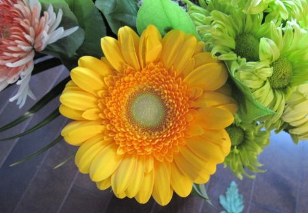 Bouquet with a Yellow flower - green, photography, orange, Flowers, yellow, Daisy