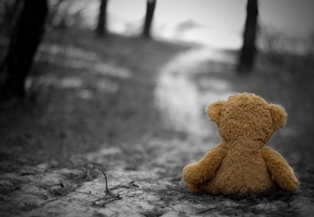 Loneliness - bear, photography, loneliness, teddy