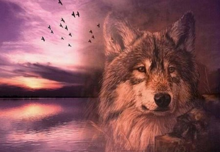 Over Looking The Lake - lake, abstract, nature, fantasy, animal, wolf