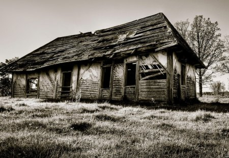 Scary House - black, art, black and white, landscape, dark, white, house, scary, nature, fantasy