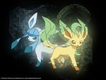 Glaceon and Leafeon