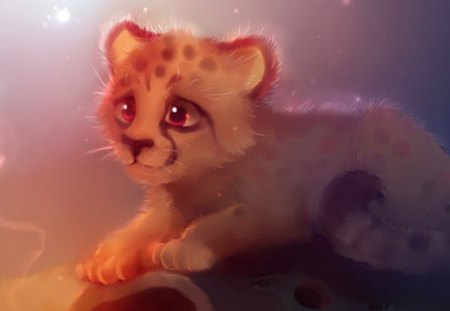 A very beautiful cheetah # - i, sd, rert, y
