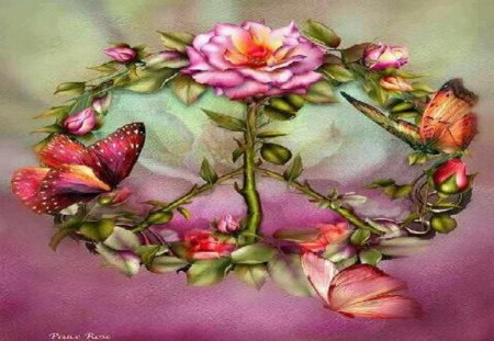 Peace Rose - roses, other, abstract, butterflies, fantasy