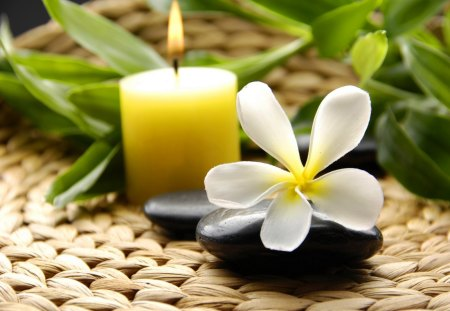 Spa retreat - still life, nice, flower, lovely, candle, beautiful, retreat, pretty, green, bamboo, spa, concept