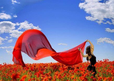 Wind of freedom - beautiful, meadow, girl, brunette, nice, freedom, lady, woman, wind, red, poppies, summer, field, sky, joy, lovely, fresh, clouds, nature, vail