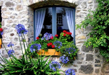 Home, sweet home - flowers, window, summer, beautiful, colorful, pretty, lovely, cottage, fresh, nice, home, fragrant, house, curtain, stones, sweet