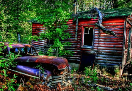 By the Wooden Shack - rusty, greenery, car, shack, antique, forest, lush