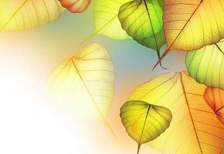 Transparency - leaves, bright colors, texture, leaf, art, yellow