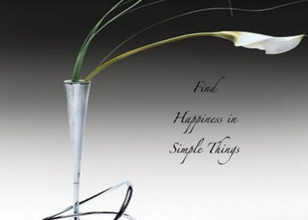 Find happiness in simple things - sense, happiness, wallpaper, things, words
