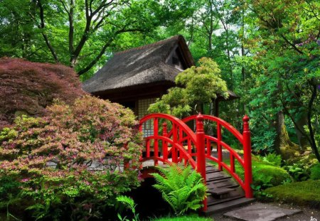 Japanese garden - garden, beautiful, river, pretty, harmony, water, nice, calm, grass, forest, red, greenery, green, summer, trees, colorful, lovely, leaves, bridge, japanese, nature, peaceful, bushes, stream