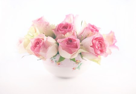 Roses Pastel ~Charismatic~ - lovely, pink, cup, roses, charismatic, friend, pastel