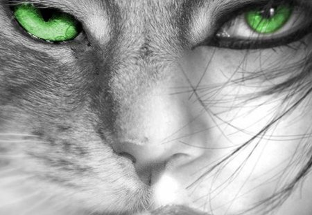 Those green eyes - green, eyes, woman, cat