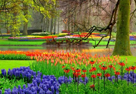 Lovely floral garden Forests Nature Background Wallpapers on