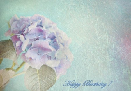 ~ ♥ღ Happy Birthday Purple-Haze ღ♥ ~ - wishes, birthday, flower, friend