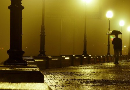 Walking Alone in a Rainy Night - lamp, walk, alone, rainy, night