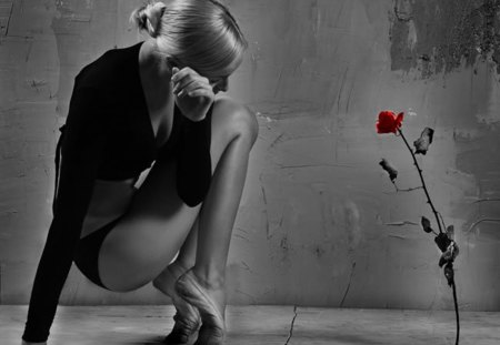 adoration - ballerina, rose, red, wall