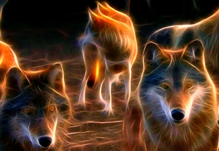 Wolf Pack - abstract, art, beautiful, digital