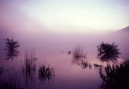 Lake in the Morning - lakes, sunrise, morning, fog, nature, dawn
