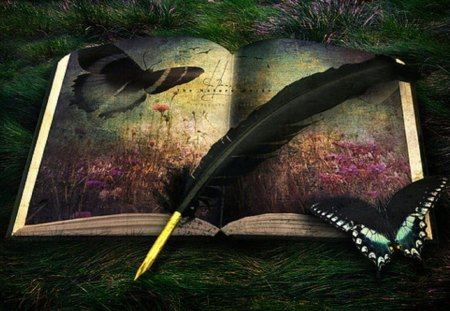 enchanted - texture, abstract, butterflies, feather, book
