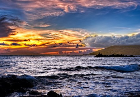 glorious sky - fishing, clouds, sunset, rocks, sea