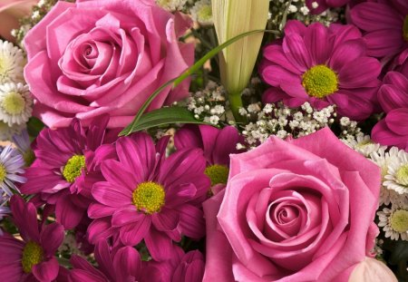 Pink Flowers - petals, pink, petal, basket, flower, purple, nature, magenta, flowers, green, yellow, white