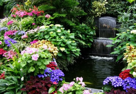 Water Feature - pond, flowers, water feature, garden