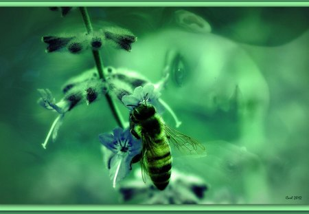 Both leave each other with rest and nothing happens - green, girl, honeybee, woman, art