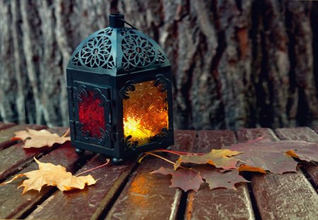 Autumn Lantern - candle, beautiful, leaf, autumn, leaves, photography, nature, peaceful, lantern