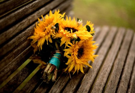 Sunflowers Bouquet - flowers, beautiful, sunflower, lovely, yellow, flower, photography, bench, bouquet