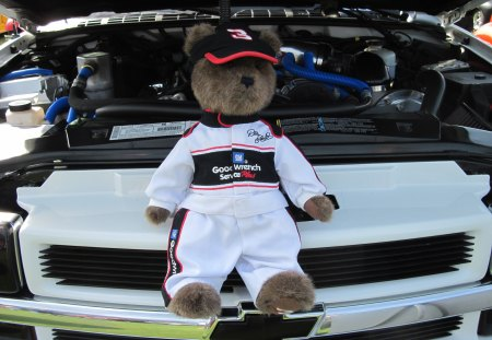 GM teddy bear - bear, photography, black, white, GMC, brown
