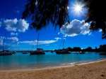 BRIGHT DAY at MAURITIUS